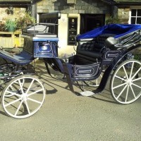 Get 10% off bookings made with Devon and Cornwall Driving Carriages