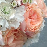 Win 50% off your wedding flowers from Escential Blooms